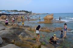 Spiaggia di Co Thach, Vietnam Fotografia Stock Libera da Diritti
