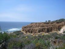 Spiaggia di condizione dei pini di Torrey Immagine Stock