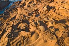 Spiaggia di condizione vuota del fagiolo alla California del Nord Immagine Stock