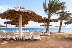 Spiaggia di corallo vuota del Mar Rosso nella città di Aqaba Fotografie Stock