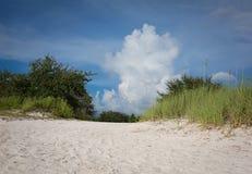 Spiaggia di Cypress Fotografie Stock