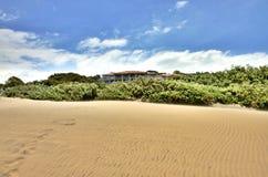 Spiaggia di Durban Fotografia Stock Libera da Diritti