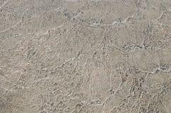 Spiaggia di Elafonisi, Chania, Creta, Grecia - dettagli nel mare fotografie stock