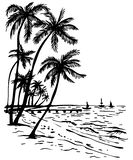 Spiaggia di estate con le palme Fotografia Stock Libera da Diritti