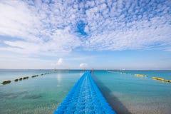 Spiaggia di estate, mare del blu della radura Fotografia Stock Libera da Diritti