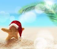 Spiaggia di estate Stelle marine in cappello di Santa Claus immagini stock