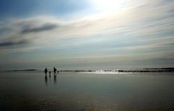 Spiaggia di follia Immagini Stock