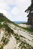 Spiaggia di Frenchmans sull'isola di Stradbroke, Queensland Immagini Stock