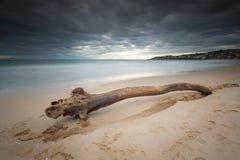 Spiaggia di Gaeta Serapo Immagini Stock