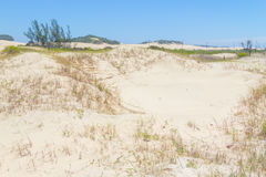 Spiaggia di Guarita a Torres Fotografia Stock Libera da Diritti