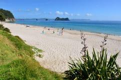 Spiaggia di Hahei - Nuova Zelanda Fotografia Stock