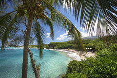 Spiaggia di Hamoa vicino a Hana sul lato est di Maui, Hawai Immagini Stock Libere da Diritti