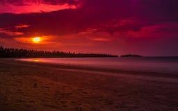 Spiaggia di Honje fotografata al tramonto fotografia stock