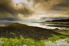 Spiaggia di Kimmeridge Immagini Stock