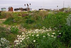 Spiaggia di Kingsdown vicino a Dover in Kent England Fotografie Stock