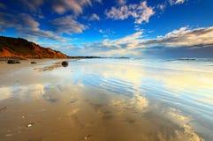 Spiaggia di Koekohi, massi di Moeraki, Nuova Zelanda fotografia stock