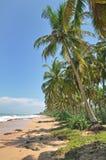 Spiaggia di Kosgoda, Sri Lanka Fotografia Stock Libera da Diritti