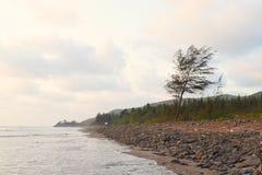 Spiaggia di Ladghar - Serene Seascape con pianta e le colline - carta da parati naturale Immagine Stock Libera da Diritti