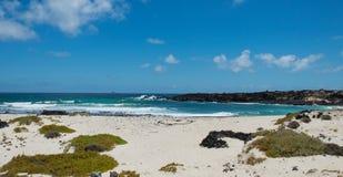 Spiaggia di Lanzarote Immagini Stock Libere da Diritti
