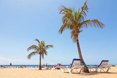 Spiaggia di Las Teresitas su Tenerife Immagine Stock Libera da Diritti
