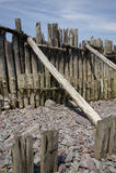 Spiaggia di legno stagionata di Porlock Fotografia Stock Libera da Diritti