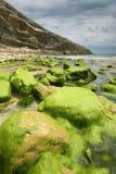 Spiaggia di Llanes, Asturie Immagini Stock Libere da Diritti