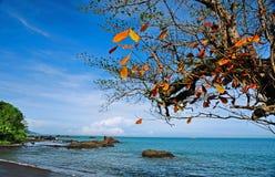 Spiaggia di Loji, Pelabuhan Ratu, Indonesia Immagine Stock