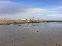 Spiaggia di marea fotografia stock
