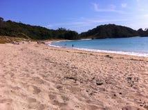 Spiaggia di Matapouri Fotografia Stock