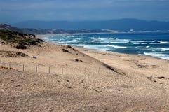 Spiaggia di Monterey Fotografia Stock