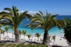 Spiaggia di Mst del fel di Anfi, isola di Gran Canaria, Spagna Immagine Stock