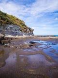 Spiaggia di Muriwai Immagine Stock