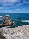 Spiaggia di Muriwai Fotografie Stock Libere da Diritti