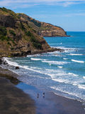 Spiaggia di Muriwai Immagini Stock
