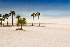 Spiaggia di Panama City Immagine Stock