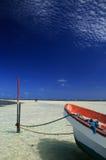Spiaggia di paradiso Fotografia Stock