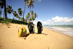 Spiaggia di paradiso, BR della Bahia Fotografie Stock Libere da Diritti
