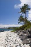 Spiaggia di paradiso dell'Hawai Fotografie Stock Libere da Diritti