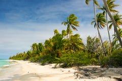 Spiaggia di paradiso, Fakarava, Polinesia francese Immagine Stock