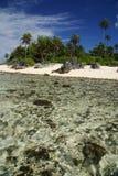 Spiaggia di paradiso in Polinesia francese Fotografia Stock