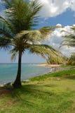 Spiaggia di paradiso, Porto Rico immagine stock libera da diritti