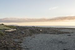 Spiaggia di Paraparaumu Immagini Stock