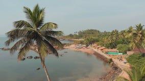 Spiaggia di Pathem di bellezza sui precedenti delle palme Paesaggio di vista aerea Stato di Goa in India archivi video