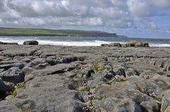 Spiaggia di pietra vicino al mare Fotografia Stock