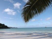 Spiaggia di Praslin Fotografia Stock