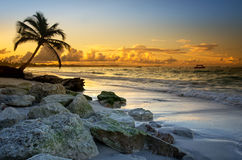 Spiaggia di Punta Cana, Repubblica dominicana Fotografie Stock Libere da Diritti