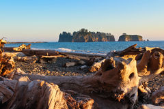 Spiaggia di Rialto, NP olimpico immagini stock libere da diritti