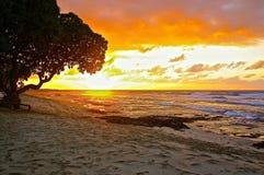 Spiaggia di rilassamento Immagine Stock