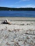 Spiaggia di sabbia fotografia stock libera da diritti