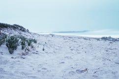 Spiaggia di sabbia Immagine Stock Libera da Diritti